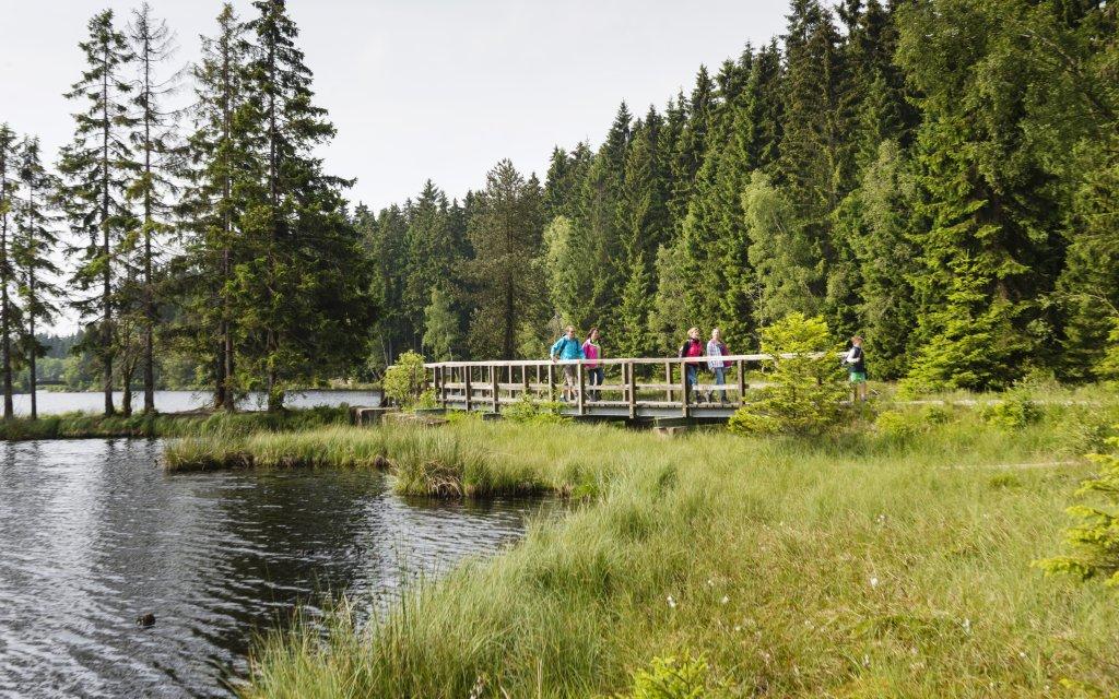 Natur und See  in Bischofsgrün