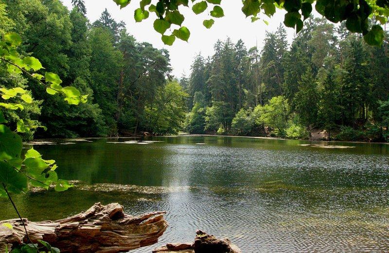 Donoper Teich im Eggegebirge