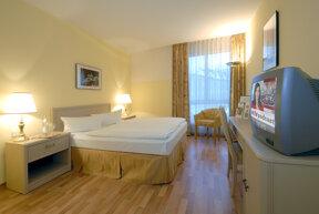 Zimmer Standard 1a