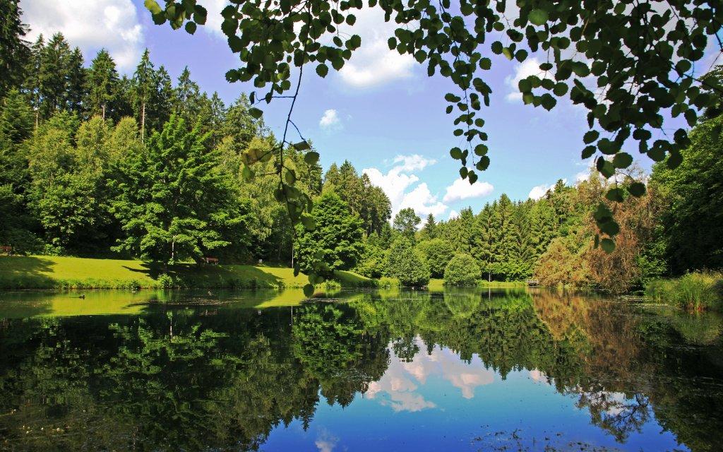 Waldsee im WellnessWald Waldachtal