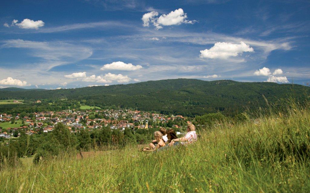 Blick über Frauenau im Bayerischen Wald