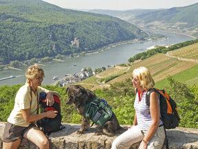 Wandern by Rüdesheim Tourist AG - Karl-Heinz Walter