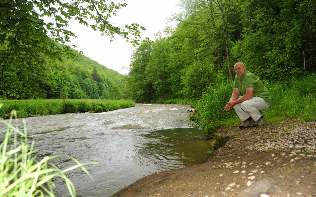 Flussufer in Muggendorf