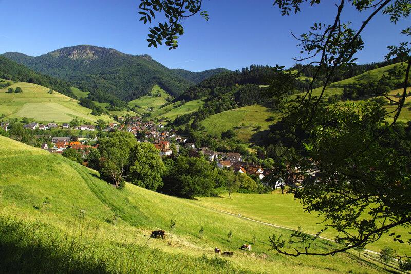 Münstertal mit Belchen