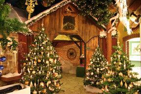 Geschmückte Weihnachtsbäume