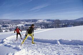 Skifahrer im Schwarzwald