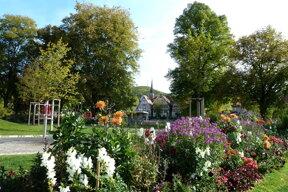 Nagold, Park, Blumen