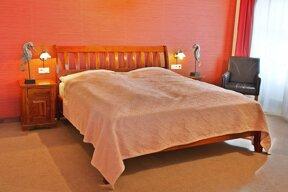 Komfort DZ-hotel Zlaty Lev (2)