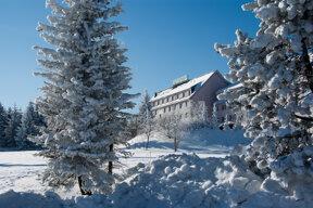 Winter mit Bäume