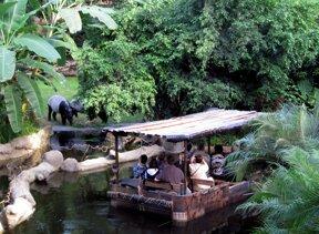 Tapire im Gehege c Zoo Leipzig