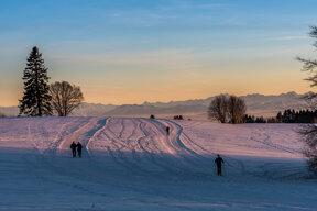 Winterwelt Südschwarzwald