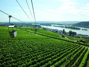 Rüdesheim (7)