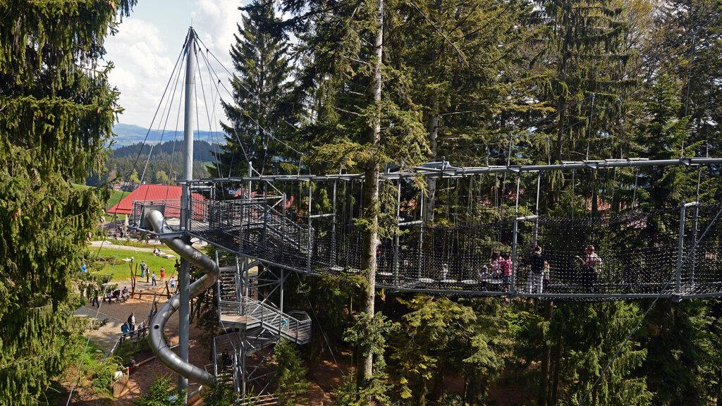 Hängebrücke C Skywalk Allgäu