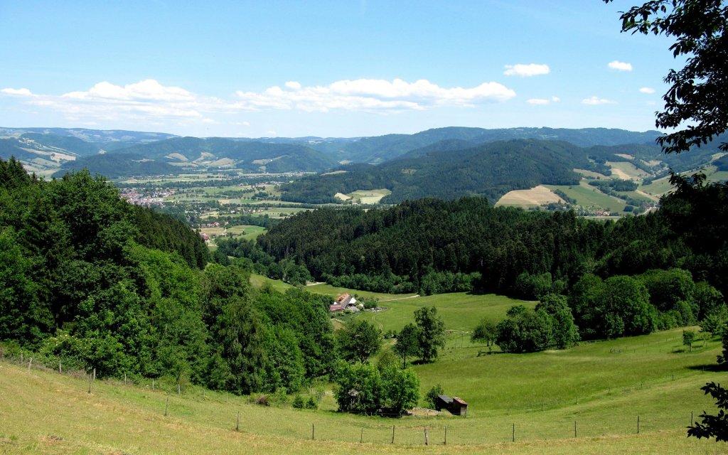 Blick auf den Schwarzwald