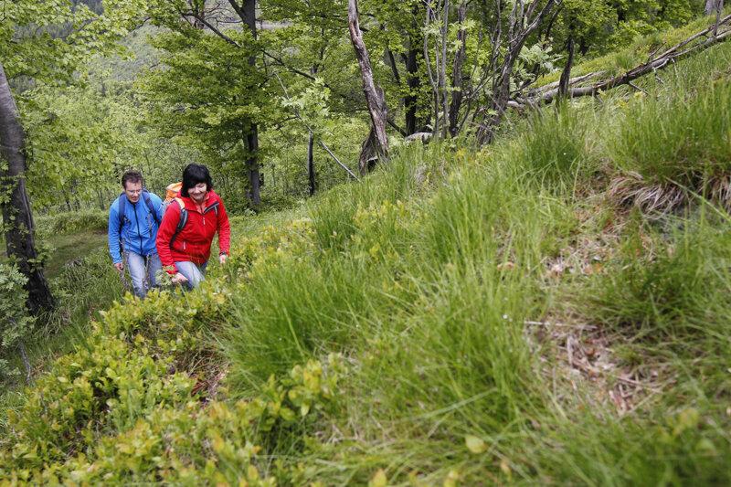 Wanderer Region Oberhof c Oberhof Tourismus
