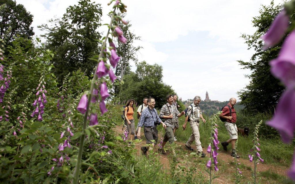 Wanderer in der Goldenen Aue vor den Kyffhäuser-Denkmal
