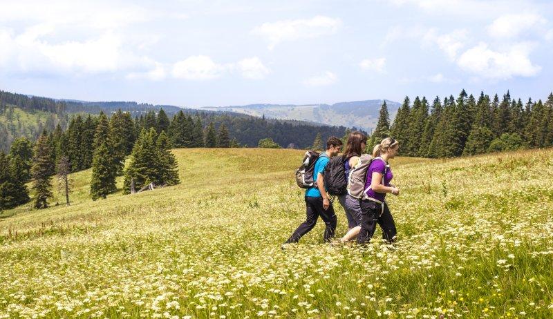 Wanderer am Feldberg