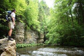 Wuchtachschlucht2 C Schluchtensteig Schwarzwald