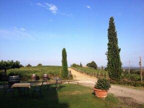 Garten Sanja
