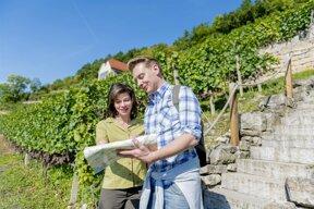 Weinwanderung an einem Terrassenweinberg im Saale-Unstrut-Gebiet  Foto Saale-Unstrut-Tourismus e V  Christoph Keller  www christophkellerfoto c