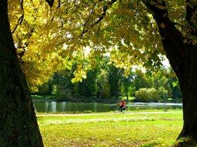 Fahrrad Donau c pixabay