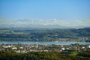 Blick auf die Alpen hinter Radolfszell
