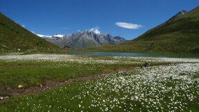 Bergersee c Nationalpark Hohe Tauern