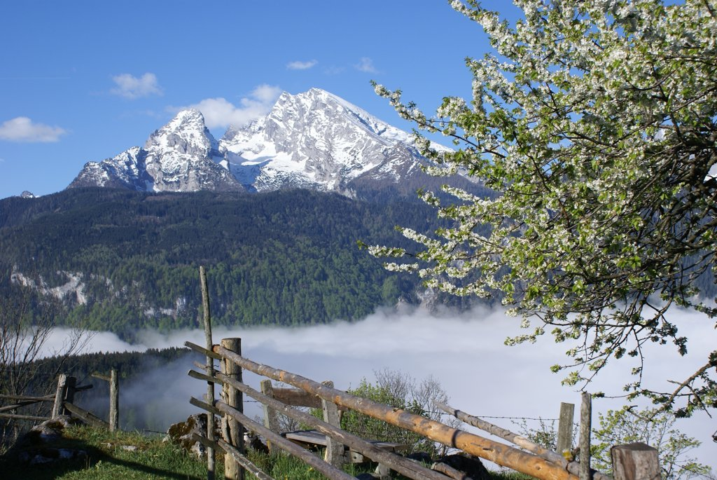 Blick auf den Watzmann in den Berchtesgadener Alpen