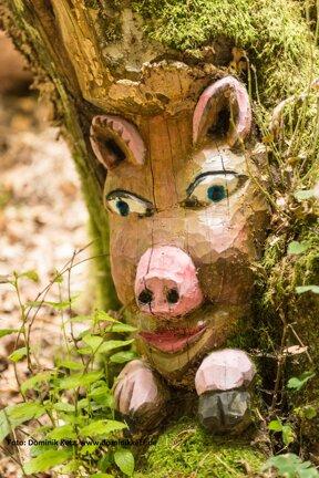 Baumgeist in der Stecken-Schläfer Klamm - Tree ghost at narrow gorge 2Stecke