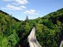 Erlebnis Harz mit Baumwipfel und Bergwerk