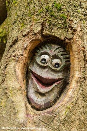 Baumgeist in der Stecken-Schläfer Klamm - Tree ghost at narrow gorge