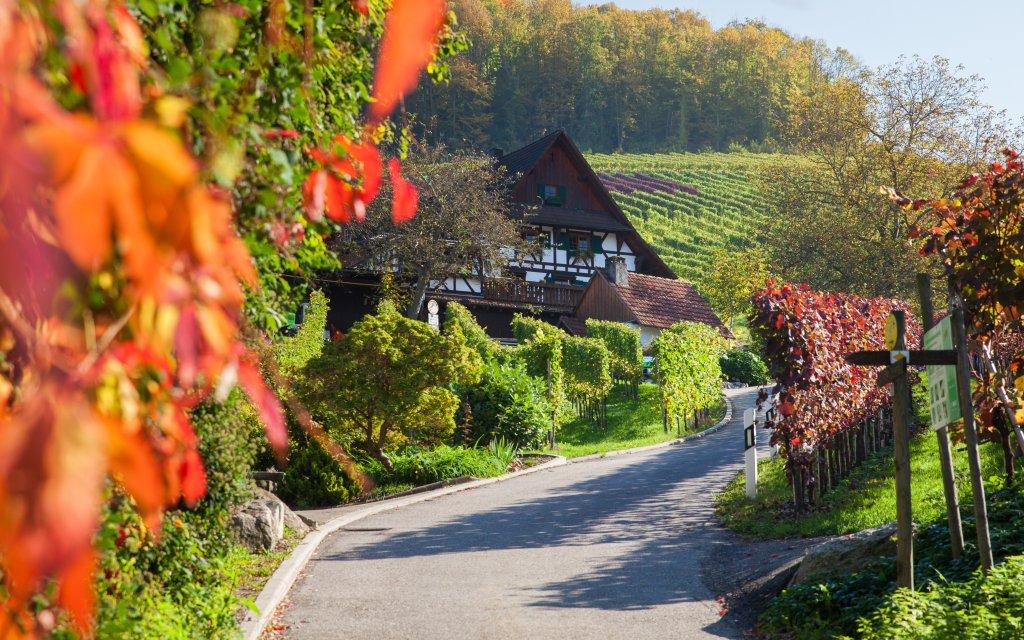 Bauernhaus bei Sasbachwalden
