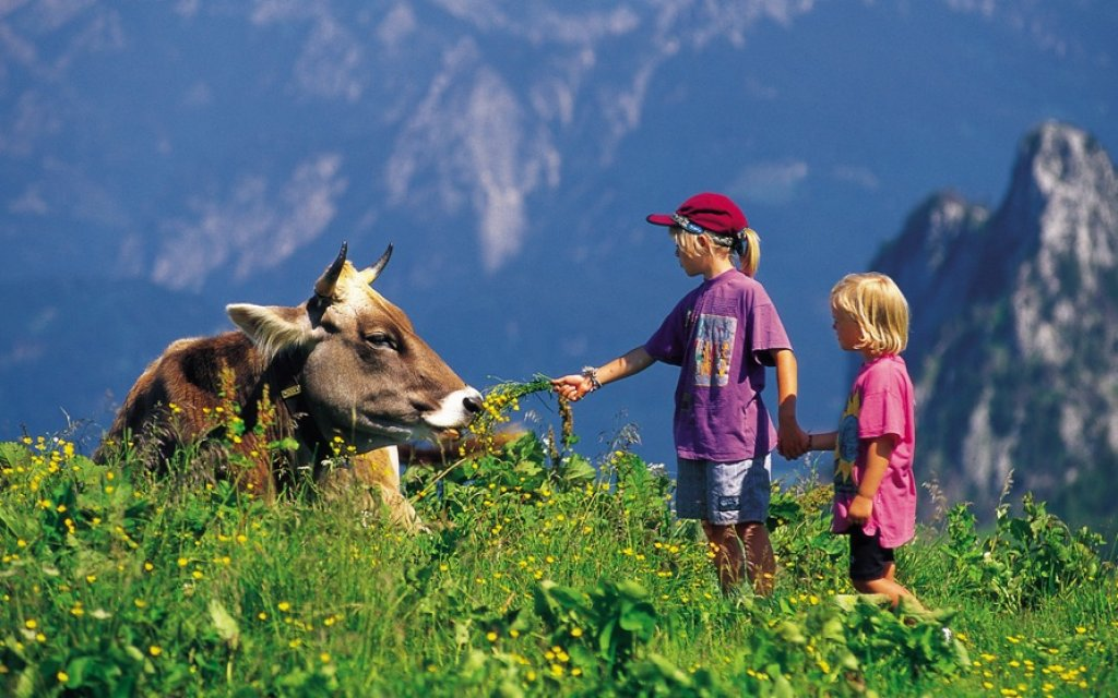 Kinder mit einer Kuh vor den Alpen im Allgäu