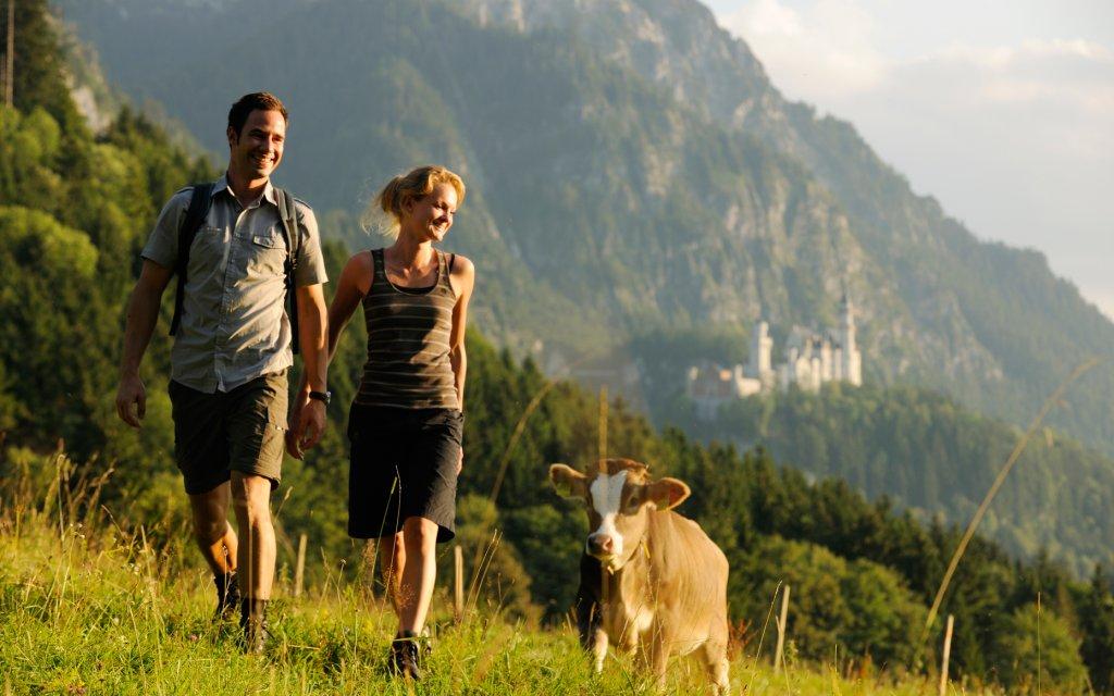 Paar auf Bergwiese im Allgäu mit Kuh