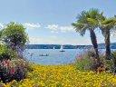 LaGa Überlingen - Blütenmeer am Bodensee