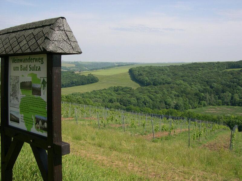 Wein Wanderweg in Bad Sulza