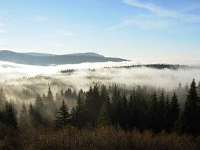 Böhmerwald Morgen2