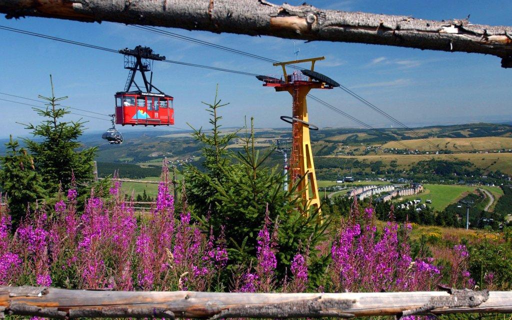 Schwebebahn Oberwiesenthal vor blauen Himmel und lila Blumen