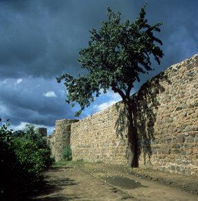 221 Stadtmauer Templin