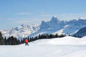 Nordic Ski, Passo Lavazé, Val di Fiemme c Fototeca Trentino Sviluppo S.p.A., Pierluigi Orler Dellasega