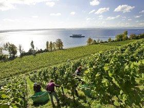 Tradition und Kulinarik ganz nah am See