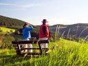 Aktiv und entspannt im werten Sauerland