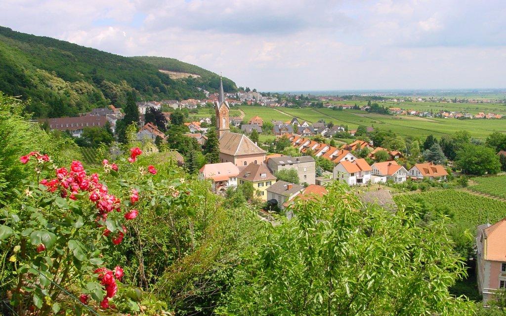 Blick auf das Weindorf Haardt in der Pfalz