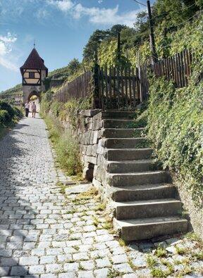 Neckarhaldenweg@Esslinger Stadtmarketing & Tourismus GmbH