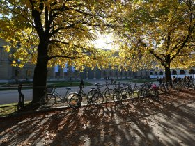 Nr. 2124s Hofgarten im Herbst Foto Sigi Mueller (1)