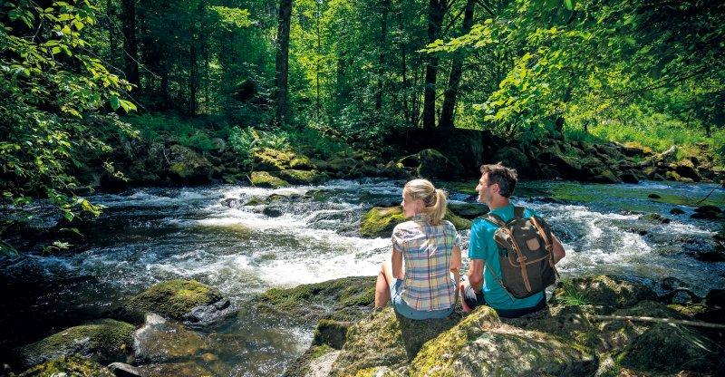 Zwei Wanderer im Bayerischen Wald