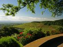 Wellness, Wein und die südlichen Momente