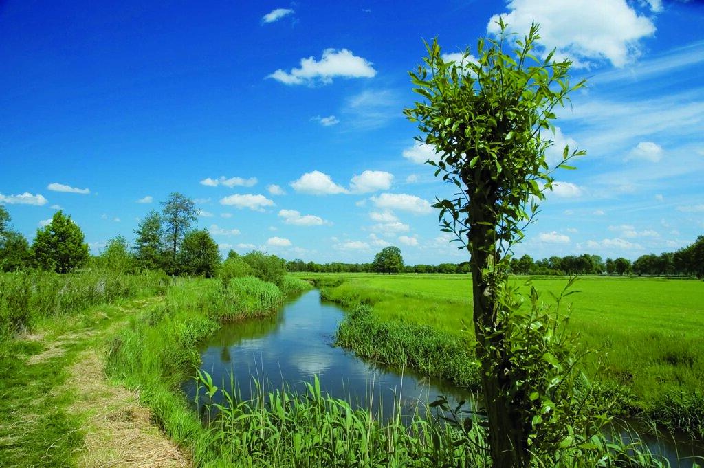 Lamdschaft in der niederländischen Provinz Overijssel