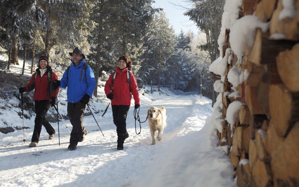 Silvester im Schwarzwald