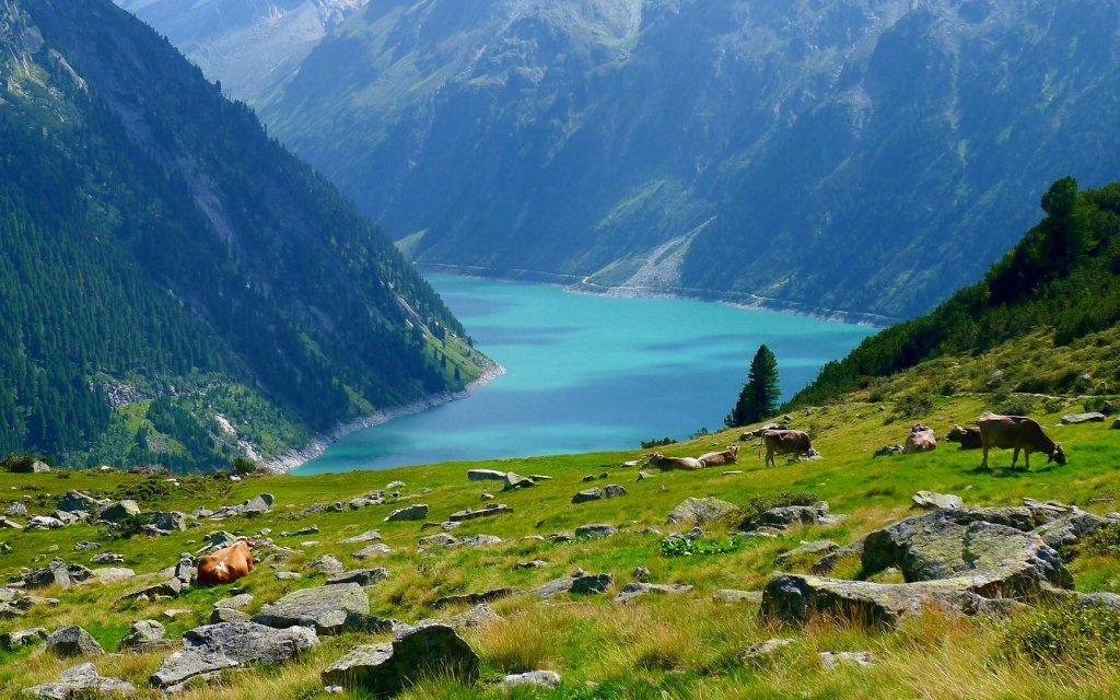 Blick auf Zillertal in Tirol